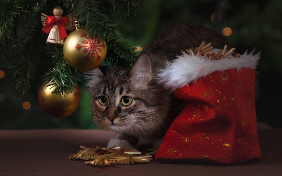 5 причини да подготвим Etsy магазина си за Коледа
