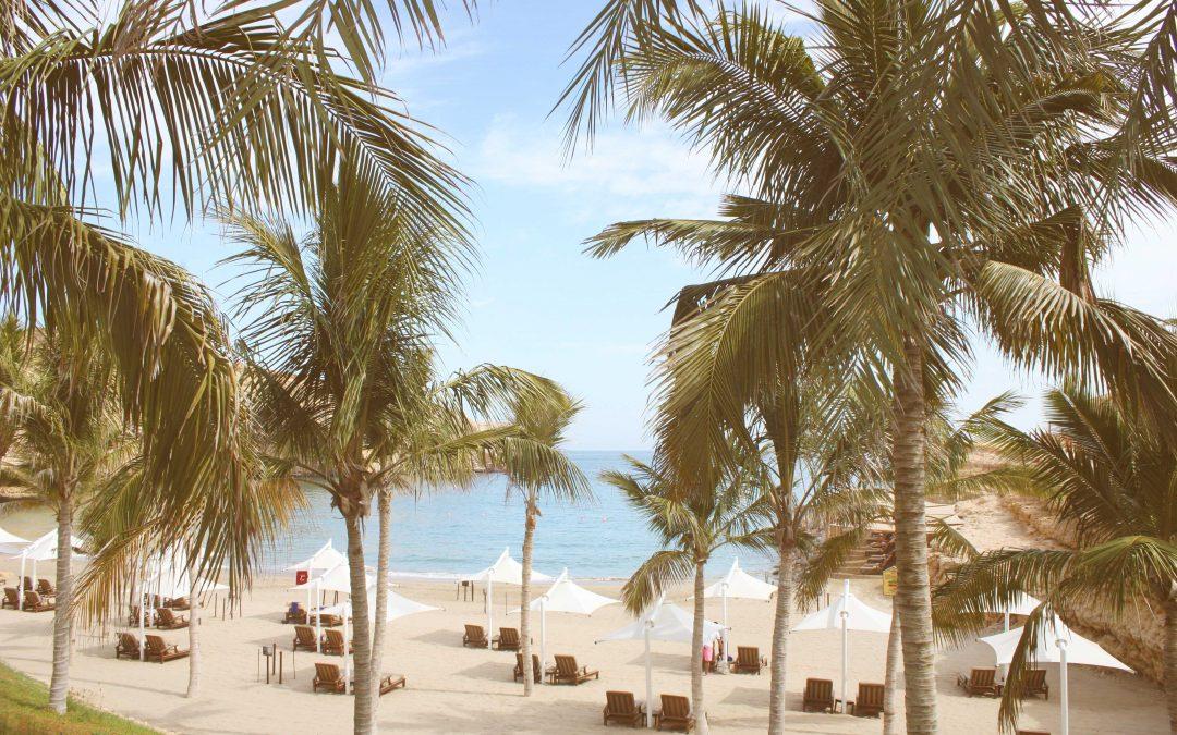 Хотелът, в който деца не се допускат, но съседите ви на плажа са морски костенурки